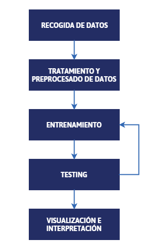 Fases data mining