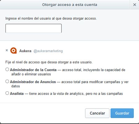 nivel-acceso-twitter-ads-4