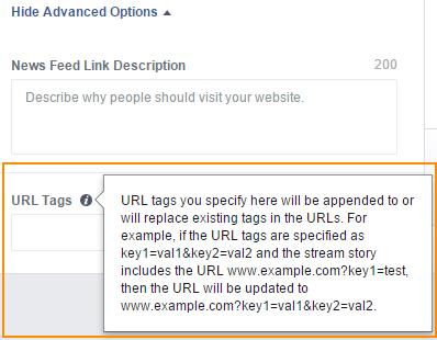 Campo URL Tags for Facebook Ads (Web)1