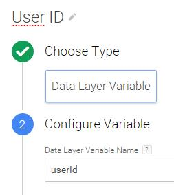 User id analytics datalayer variable GTM